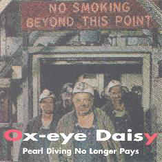 Ox-Eye Daisy - Pearl Diving No Longer Pays