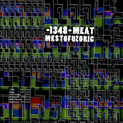 1348 Meat Mkstofuzoric - 1348 Meat Mkstofuzoric cover of release