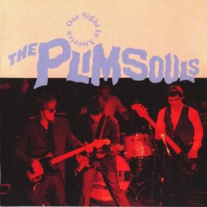 Plimsouls, The - One Night In America