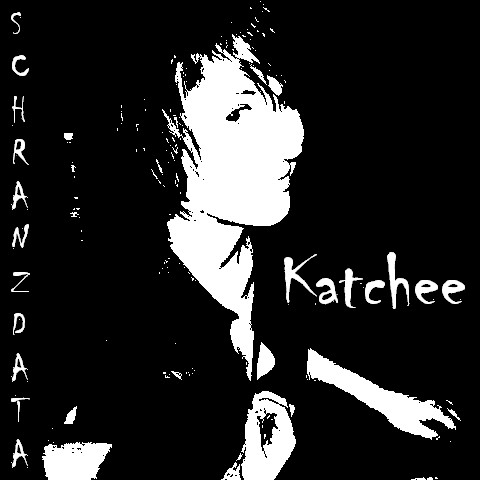 Schranzdata - Katchee cover of release