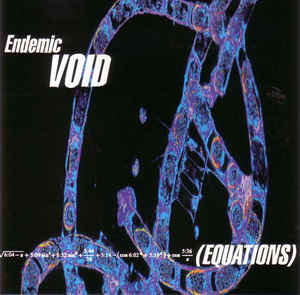 Endemic Void - Equations