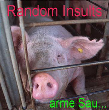 Random Insults - Arme Sau cover of release